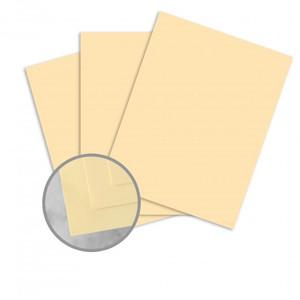 "8.5"" x 14"" Exact 67# Vellum Bristol Cover Menu Paper - Ivory (250 Sheets) - MEN-P26-814Ivory-67"